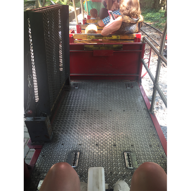 Cincinnati Zoo train wheelchair access 11